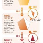 ビタミン配合化粧品は、複数の配合を確認して選ぶ